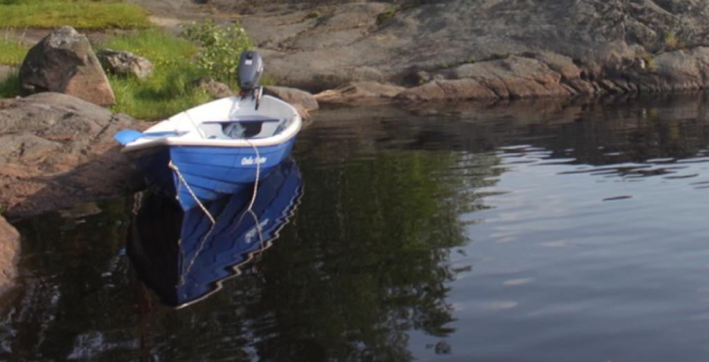 лодка самоходка
