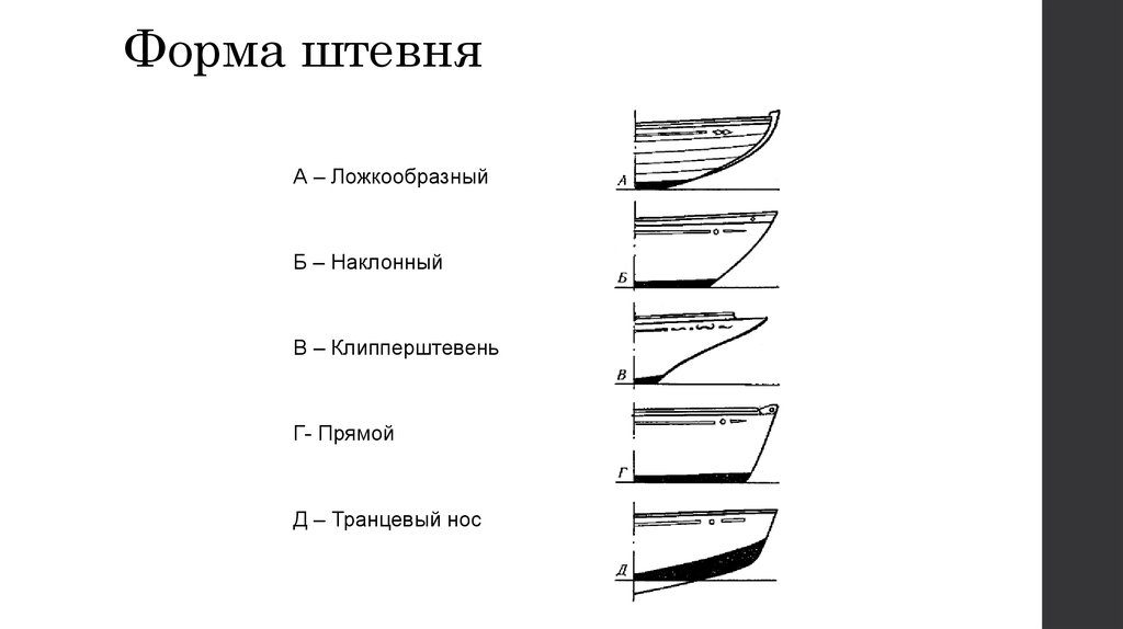 форма штевней